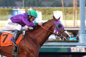 CaliforniaChrome